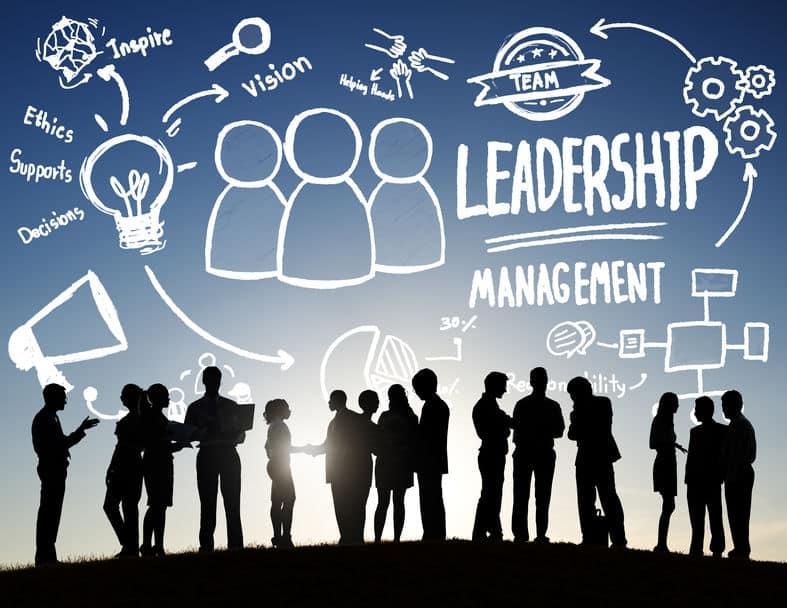 Quels sont les métiers du management?